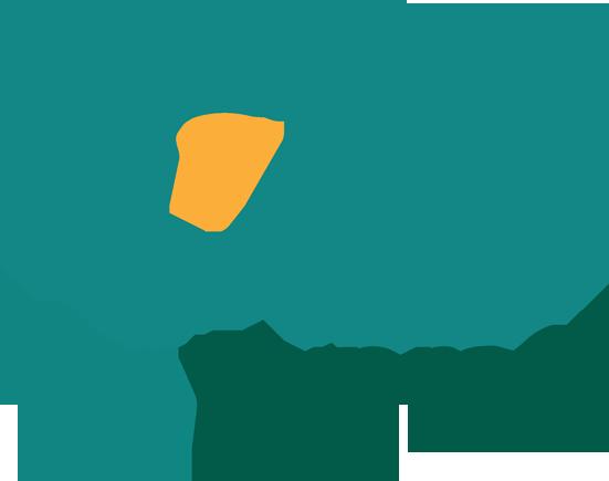 Yun Express tracking